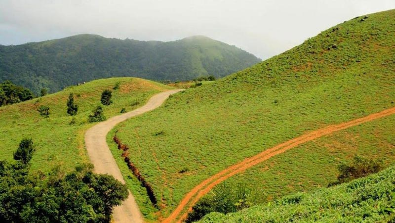 Wayanad Tour Packages From Coimbatore