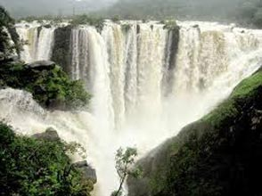 Jog And Kunchikal Falls Tour