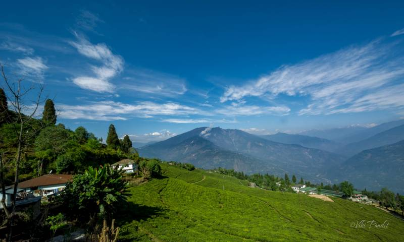 North East Delight With Pelling Tour Package