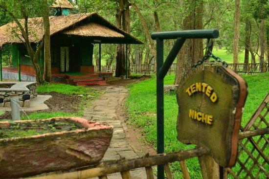 Topslip,Parambikulam 2 Day Tour Plan Raga Travels In Pollachi