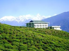 Rhododendron Tour Package (7Nights/8Days)