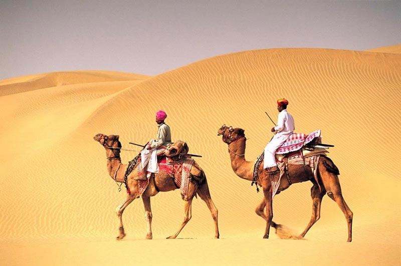 Rajasthan,5DAYS 4NIGHT Tour