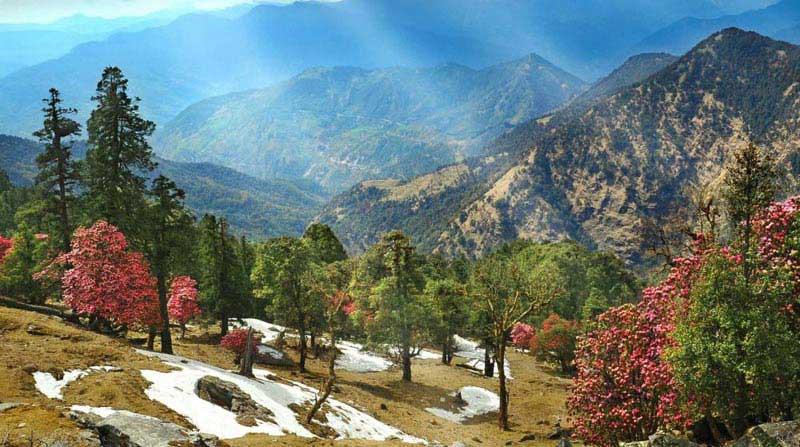 Mountain Magic In Kausani Tour