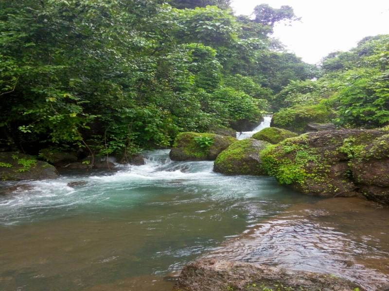 Amboli - Tal Konkan Tour