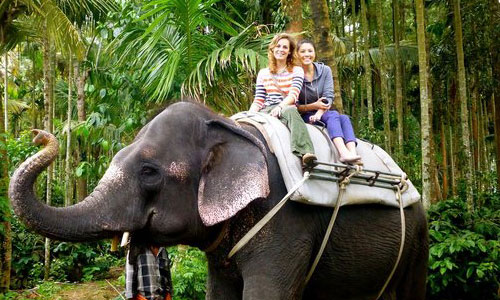 7 Days Kerala Tour
