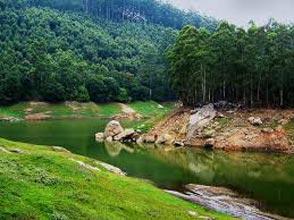 Special Kerala Honeymoon Tour(Munnar, Thekkady, Alleppey)