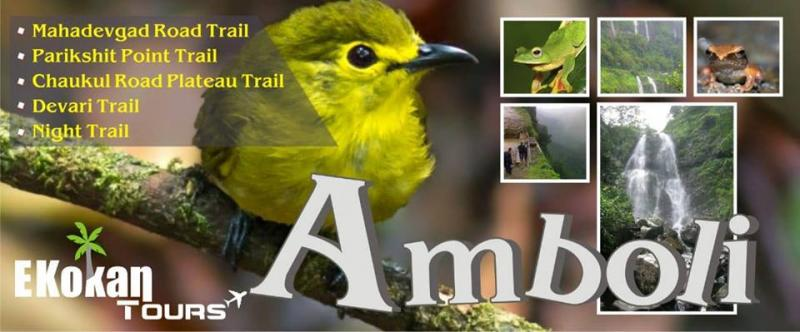 Amboli Mansoon Tour