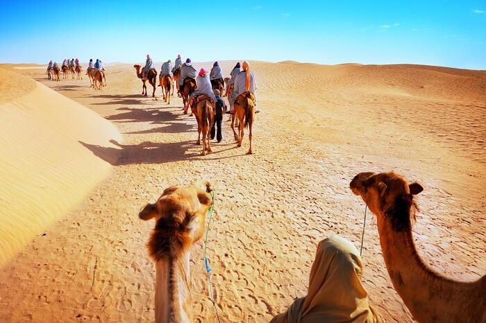 Rajasthan Travel Package 14 Night 15 Days