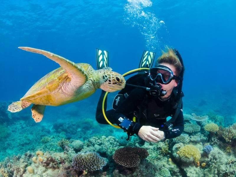 Scuba Diving In Baina Vasco Trip