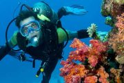 Scuba Diving With Watersports In Malvan
