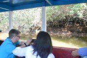 Crocodile Sighting Trip Tour