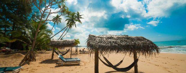Explore Sri Lanka Tour