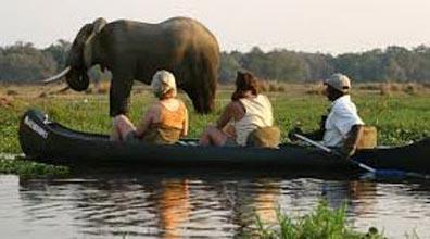 Canoe Safaris Tour