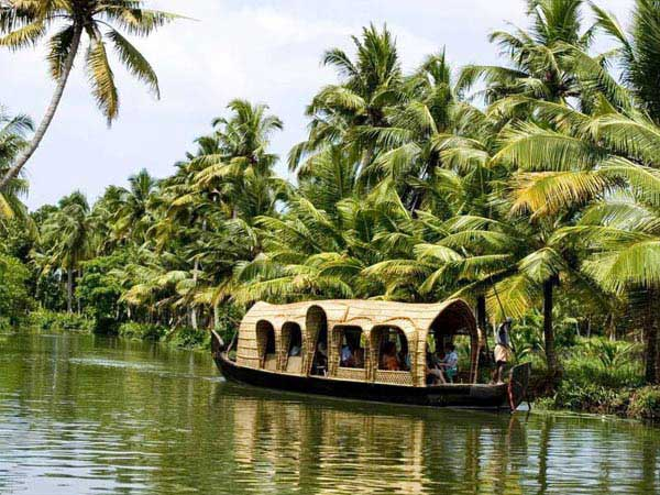 Munnar With Backwaters  Tour