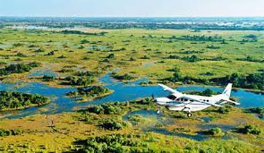 Mobile Group Safari Okavango Delta Tour