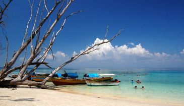 Amazing Holidays In Andaman ( 4 Nights )