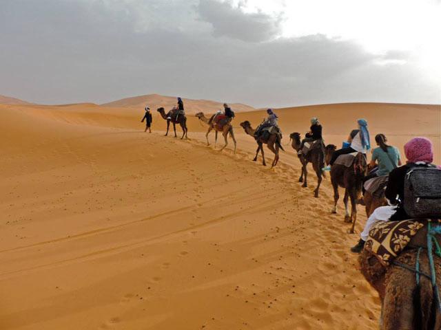 Fez Desert Tour To Marrakech Tour Package