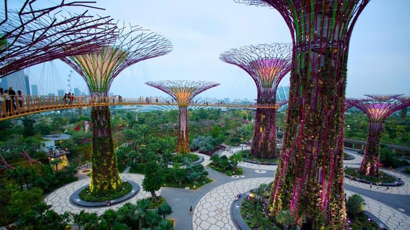Super Star Gemini Cruise With Singapore Tour