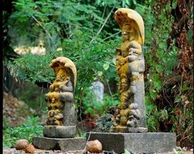 Guwahati Shillong Tour