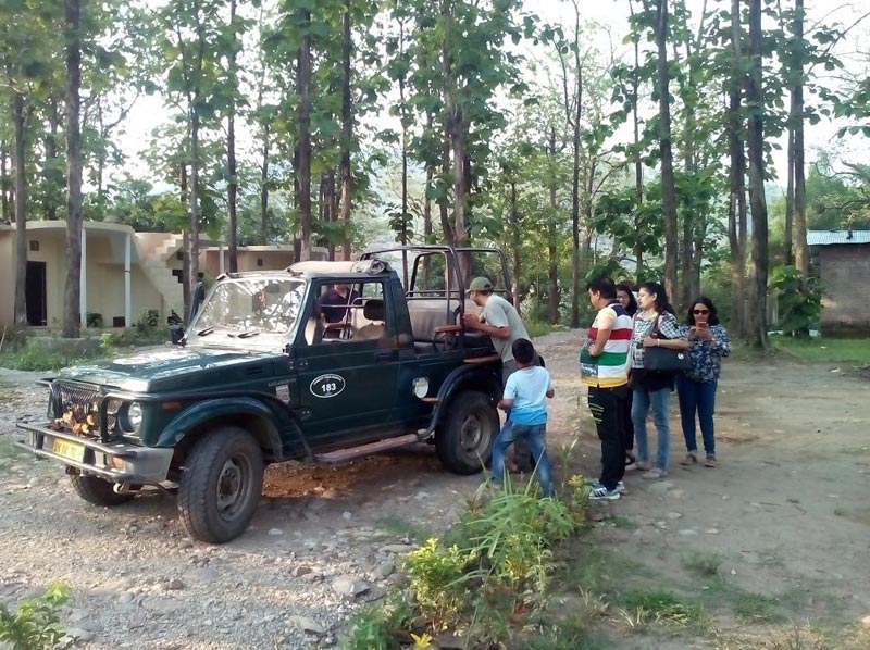 Corbett Jungle Jeep  Safari Tour