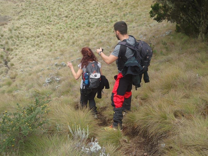 6-Day Kilimanjaro Trekking Via Machame Route Tour