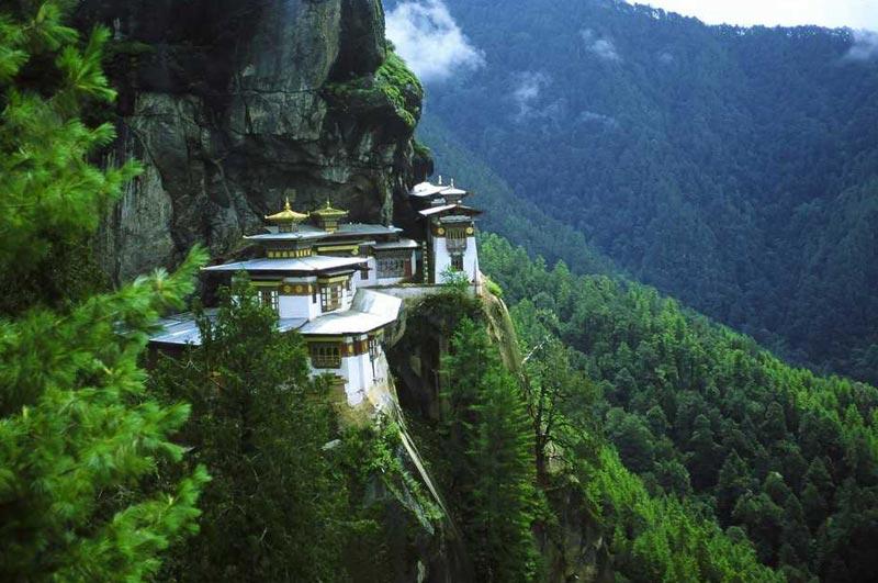 14 Days Pilgrimage Tour  ( Eco Village Tours)