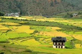 Central Bhutan Journey ( Eco Village Tours)
