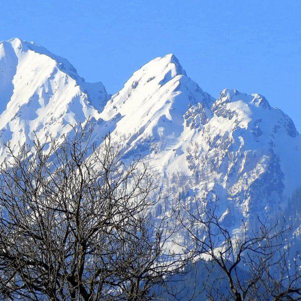 Discover Kashmir & Leh Tour