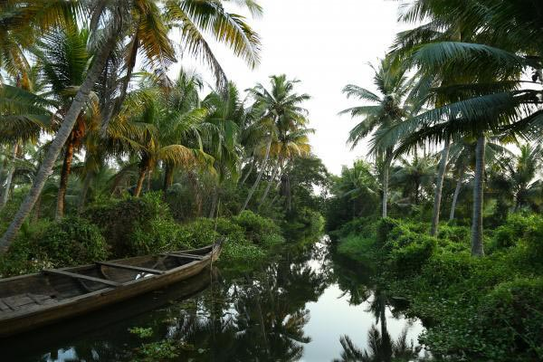 City Tour And Backwater Cruise - Cochin Tour