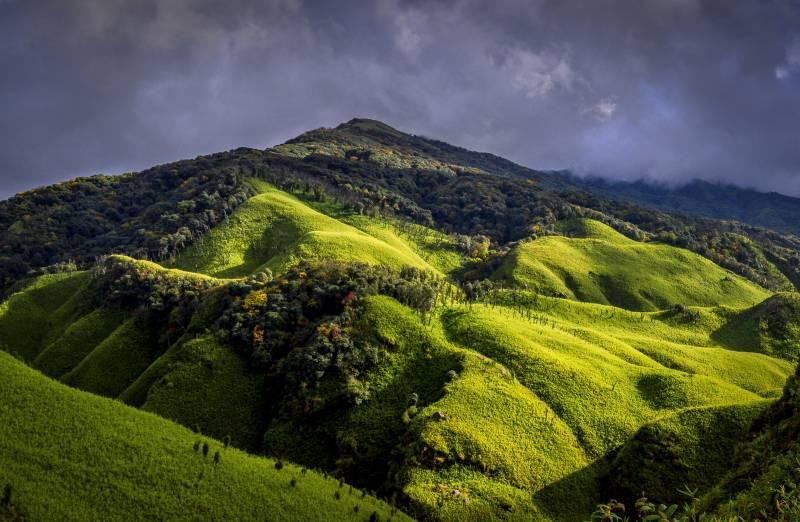Assam, Nagaland, Manipur Tour