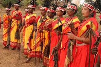 Odisha (Orissa) & Chhatisgarh Tribal Tours