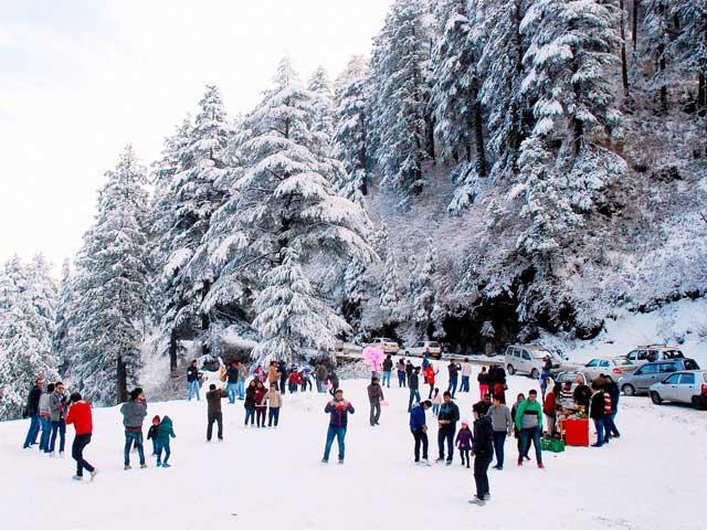 Shimla Tour 3 Day