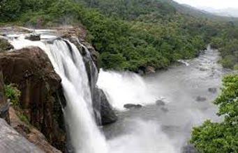 Discover Kerala Tour