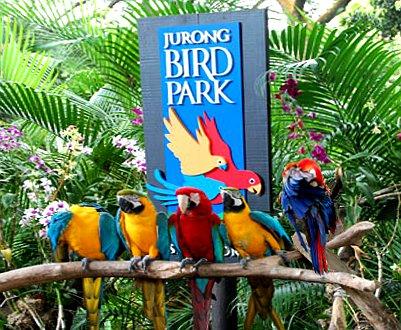 Singapore-Thailand Tour
