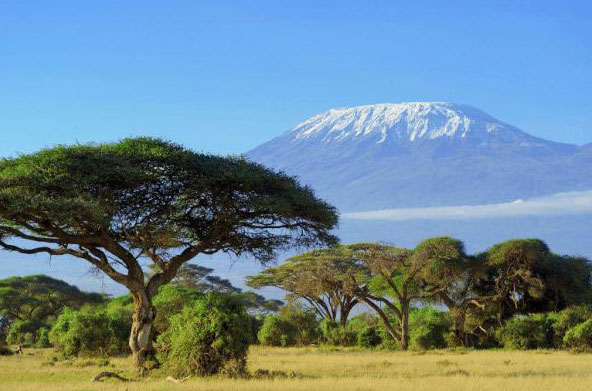 Six Days Machame Route Tour
