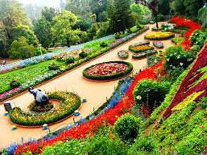 Bangalore - Mysore - Ooty Tour 07Night-08Days Tour