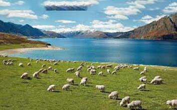 New Zealand 09 TO 13 Days Tour
