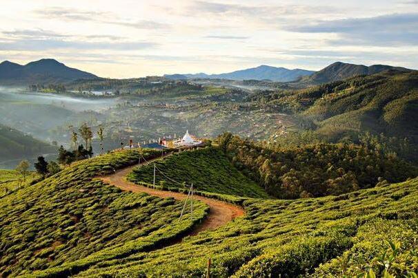 Sri Lankan Quickie Tour