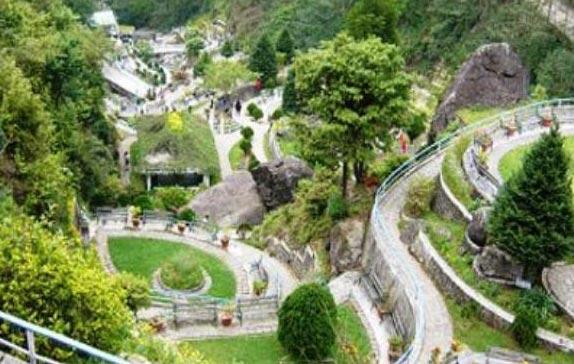 Beautiful Darjeeling Tour