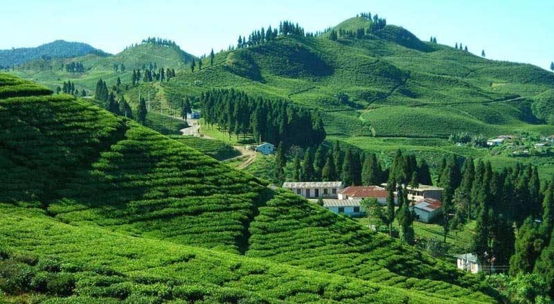Exclusive Himalaya Tour