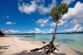 Andaman Waves Tour