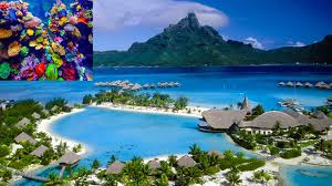 Andaman Wind Tour