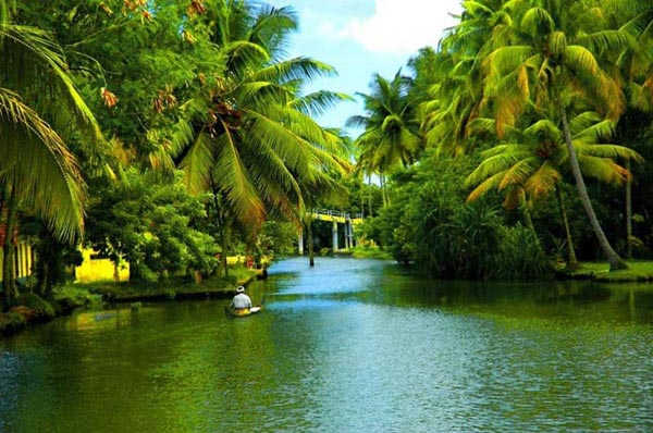Kerala Honeymoon Packages 4 Star Hotels