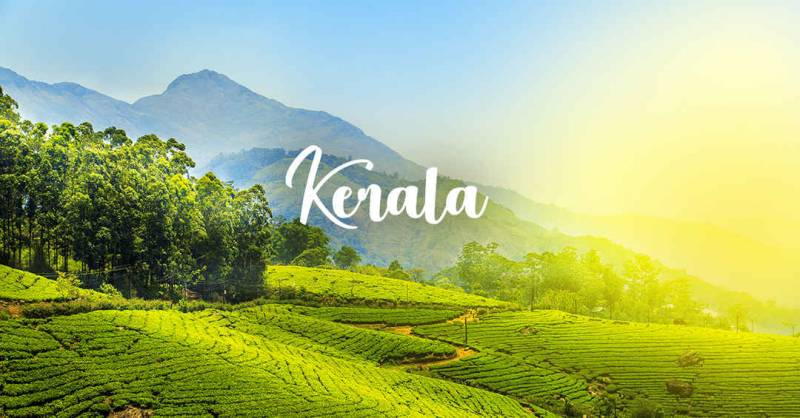 6 Nights & 7 Days Exotic And Stunning Kerala Tour Package