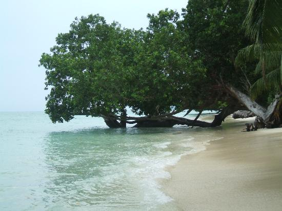 Honeymoon Packages Port Blair Package