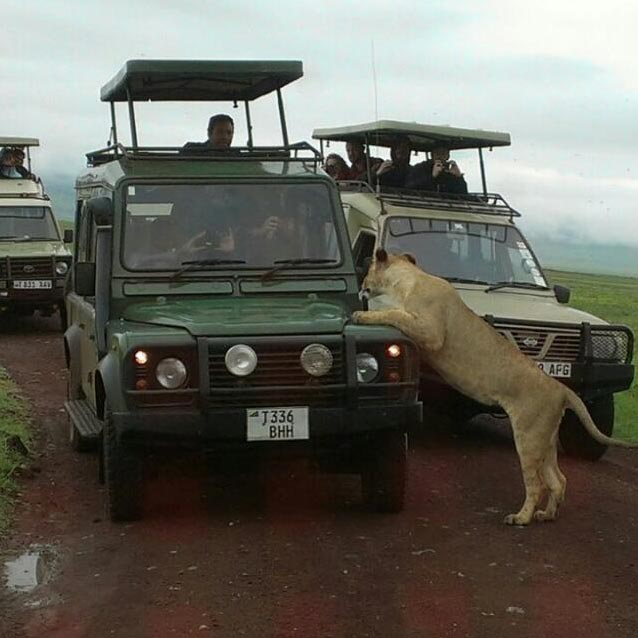 East Africa Tanzania Tours