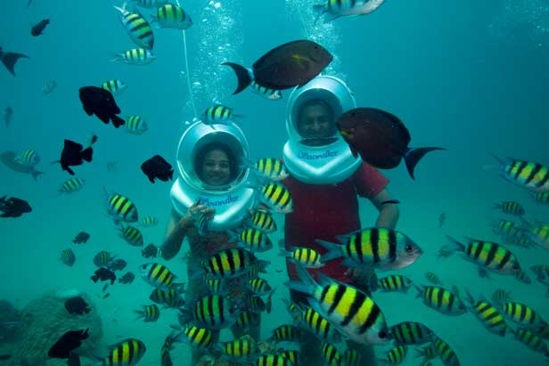 Port Blair- Havelock - Neil Island- Baratang Tour