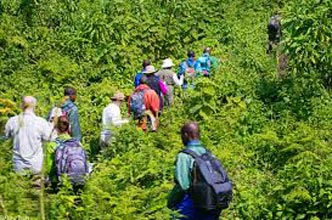 2 Nights Bisoke Hike And Cultural Experience Tour