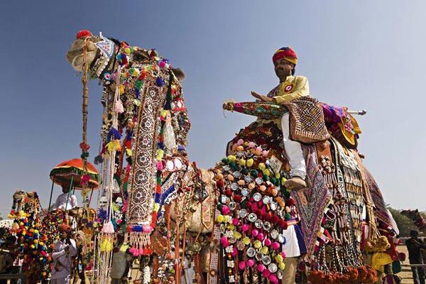 Rajasthan Fair & Festival Tour
