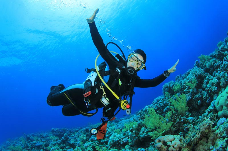 Scuba Diving Special Tour At Malvan